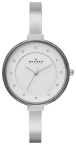 Купить Наручные часы Skagen SKW2228 по доступной цене
