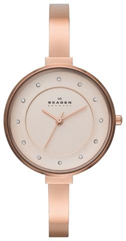 Купить Наручные часы Skagen SKW2230 по доступной цене