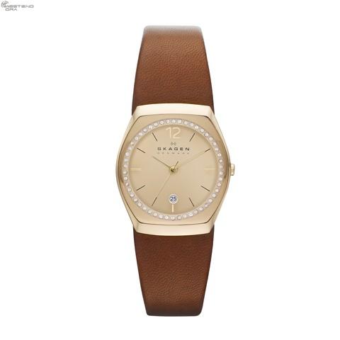 Купить Наручные часы Skagen SKW2258 по доступной цене