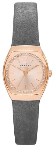 Купить Наручные часы Skagen SKW2259 по доступной цене