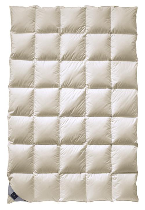 Одеяла Элитное одеяло пуховое 200х200 Balerina Mono от Billerbeck elitnoe-odeyalo-puhovoe-200h200-balerina-mono-ot-billerbeck-germaniya.png