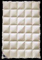 Одеяло пуховое 200х200 Billerbeck Balerina Mono