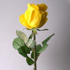 Роза 1080-3 желтая