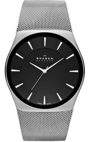 Купить Наручные часы Skagen SKW6019 по доступной цене