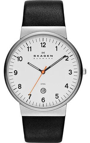 Купить Наручные часы Skagen SKW6024 по доступной цене