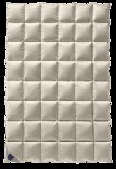 Элитное одеяло 200х220 Excelsior Mono от Billerbeck