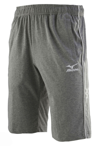 Шорты Mizuno Team Training Short 150 grey