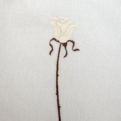 Элитная шторка для ванной Rosas C. Beige от Arti-Deco