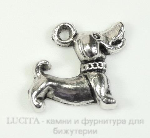 "Подвеска ""Щенок"" 18х15 мм (цвет - античное серебро) ()"