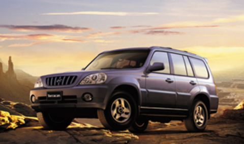 Защита передних фар позрачная Hyundai Terracan 2003- (214020)