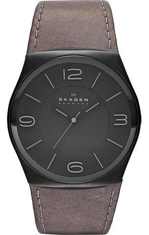 Купить Наручные часы Skagen SKW6041 по доступной цене