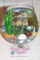 Мини аквариум Бокал 5 л с замком