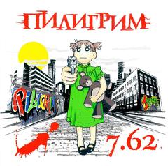 Диск DVD с клипами 7.62
