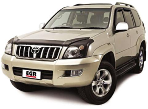 Защита передних фар карбон Toyota Land Cruiser 120 (Prado) 2003- (239180CF)