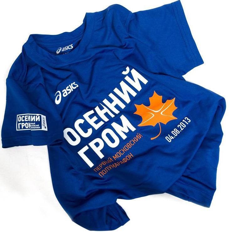 Мужская футболка Asics Осенний Гром (113971 0805)