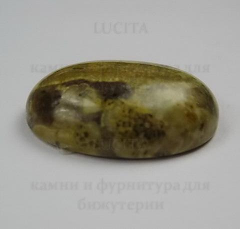 "Кабошон Яшма ""Шкура леопарда""  25х18 мм №9 ()"
