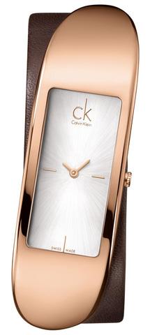 Купить Наручные часы Calvin Klein K3C236G6 по доступной цене