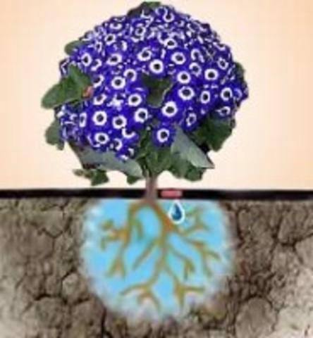 Набор Для Капельного Полива Урожай-3 Инструкция - фото 8