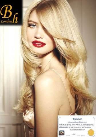 Набор  Long  цвет #24-солнечный блондин-60 см-Вес набора 140 грамм
