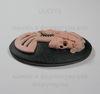 """Камея """"Скелет девушки"""" розового цвета  на черном  фоне 40х30 мм"""