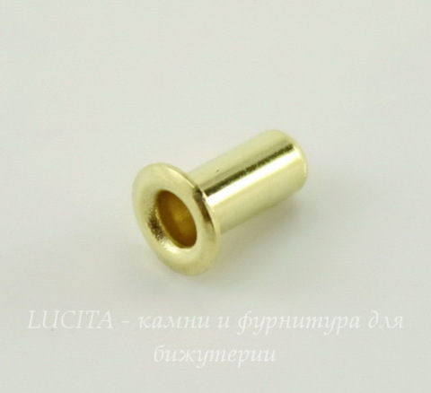 Заклепка с отверстием TierraCast (цвет-латунь) 5,3х2,2 мм, 5 штук