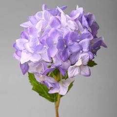 Гортензия фиолетовая арт. 2Т-100-1