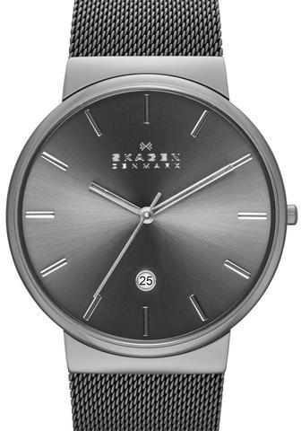 Купить Наручные часы Skagen SKW6108 по доступной цене