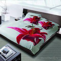 Постельное белье 1.5 спальное Byblos Iris
